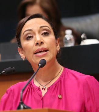 Senadora Adriana Dávila