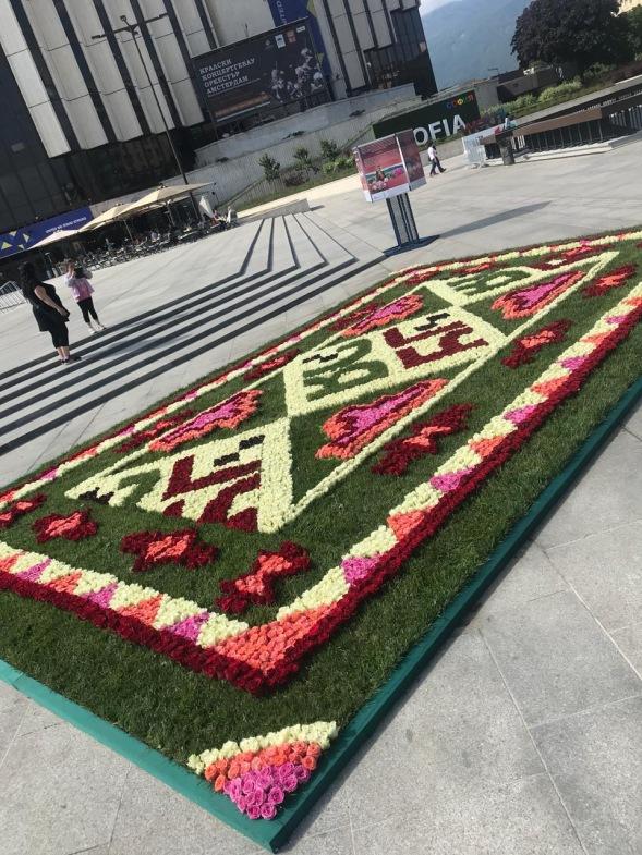 5 alfombra de rosas de todos colores