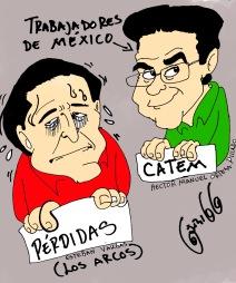 CATWM VS CROC