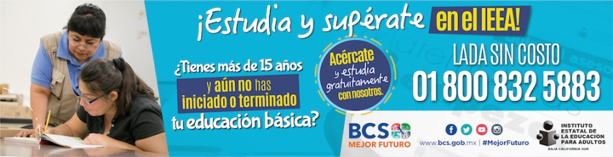 BCS-EJECUTIVO-250x300px